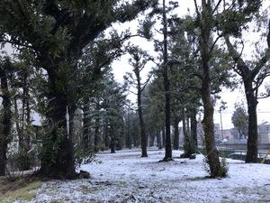 雪景色IMG_4954.JPG
